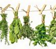 beneficios_plantas_medicinales