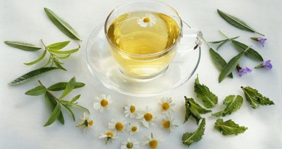 Plantas medicinales para controlar la ansiedad y el estrés