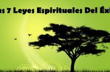 las-siete-leyes-espirituales-del-exito